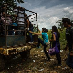 The Violence Swirling Around Palm Oil: Roads and Kingdoms Travels To Honduras.