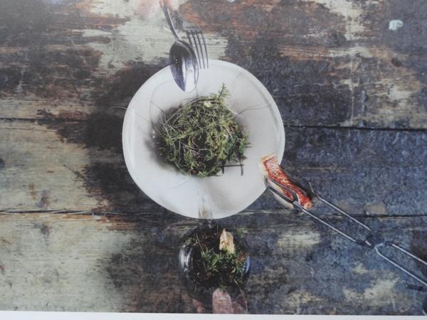 10-7-fish-dish-magnus