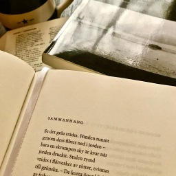 A Cup Of Coffee While Translating Tomas Gösta Tranströmer . . . Well, Not All Of Him, Just One Poem And An Appearance By Bob Dylan.