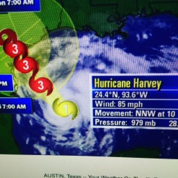 Remembering Harvey / Chapter One.