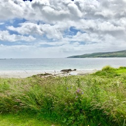 """A Drinking Man Arrives On Islay, Has A Pour Of Lagavulin, Watches Sea and Stone, Looks At A Thistle And Listens To Robert Fripp's """"Abandonment To Divine Providence."""""""